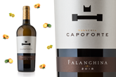 Falanghina 2018 Masseria Capoforte: a new vintage under the banner of excellent quality.
